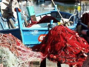 La pêche et la plaisance dans le 06