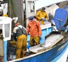 Métiers de la pêche : le matelot
