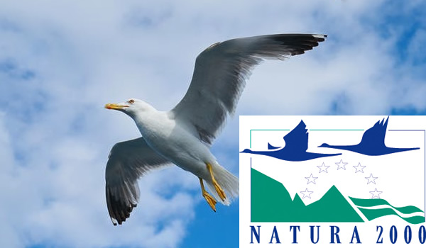 Dossier Natura 2000